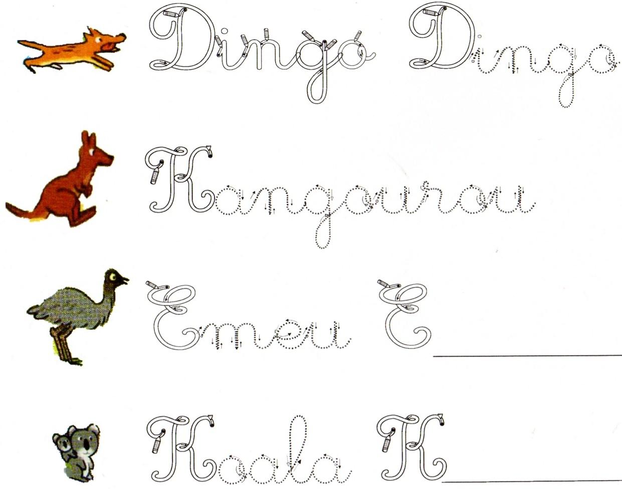 Célèbre J'apprends à écrire le nom des animaux d'Australie | 10 ROUES EN OZ RT76