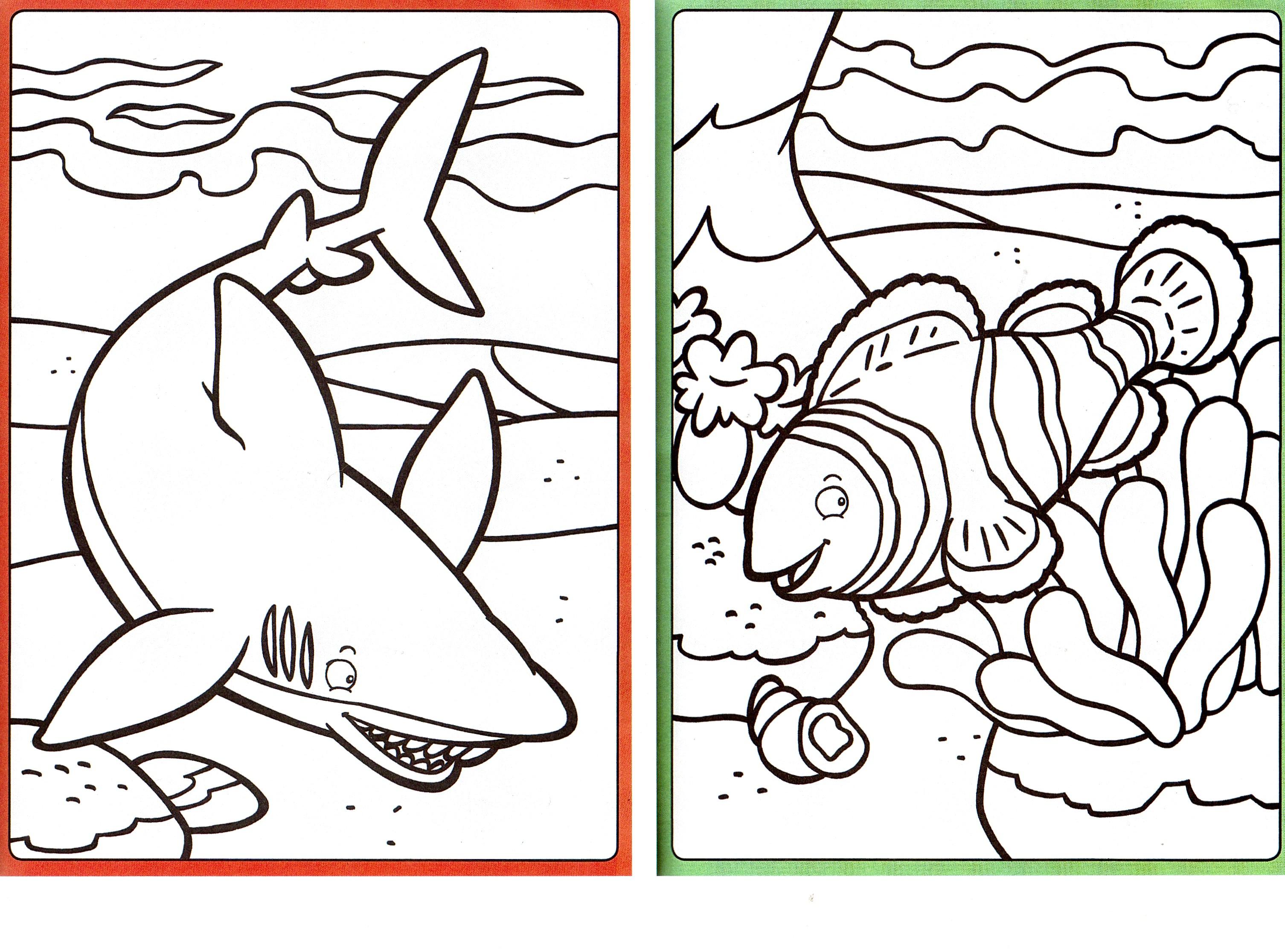 Coloriages 10 roues en oz - Modele dessin requin ...